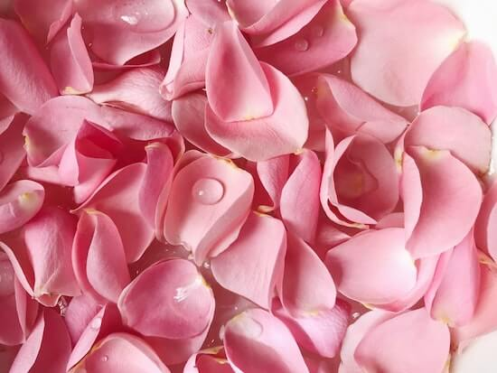 6 Benefits and Uses of Rose Water in Bangla