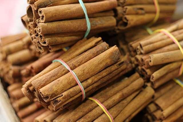 Cinnamon Plantation Method in Bangla