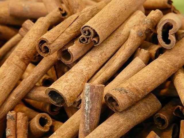 Cinnamon Cultivation Method in Bangla
