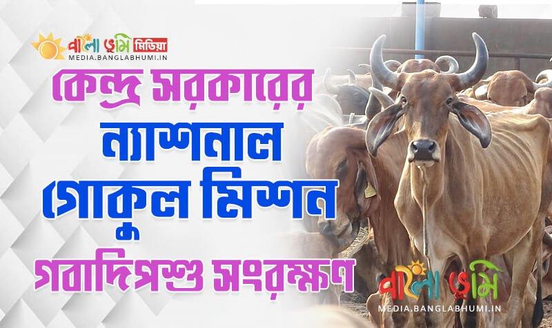 Rashtriya Gokul Mission in Bangla