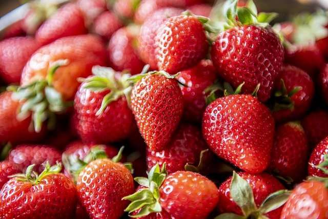 Strawberry Cultivation Method in Bangla